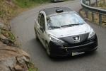 Peugeot 207 R3T MAX evo al TOP!