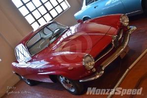 Volandia Auto Bertone (24)