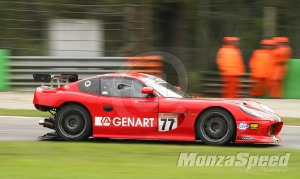 GT 4 European Series-Ginetta G50 Cup Monza (104)