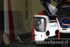 24h Le Mans  (11)