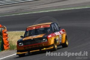 Campionato Italiano Autostoriche (17)