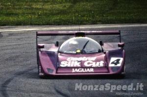 1000 Km Monza 1991 (21)