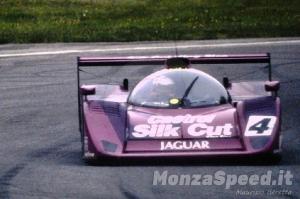 1000 Km Monza 1991 (25)