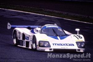1000 Km Monza 1991 (8)
